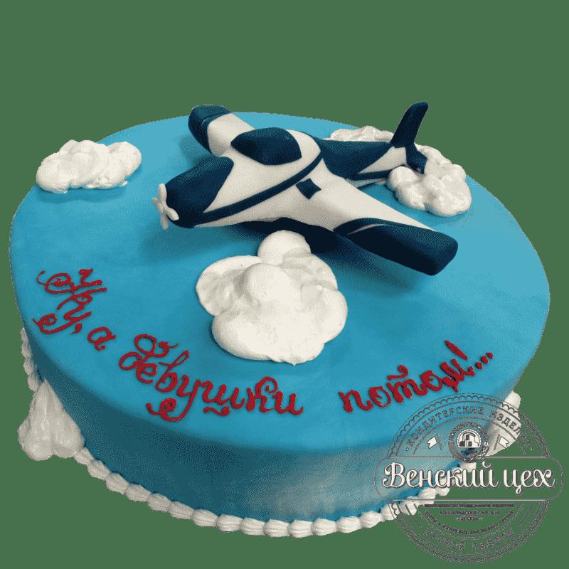 """Торт на день рождения """"Самолет"""" №114"""