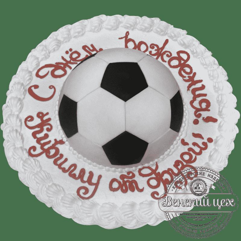 Торт на день рождения «Подарок футболисту» №152