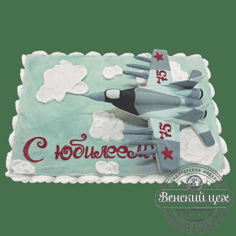 Торт на день рождения «Истребитель» №18