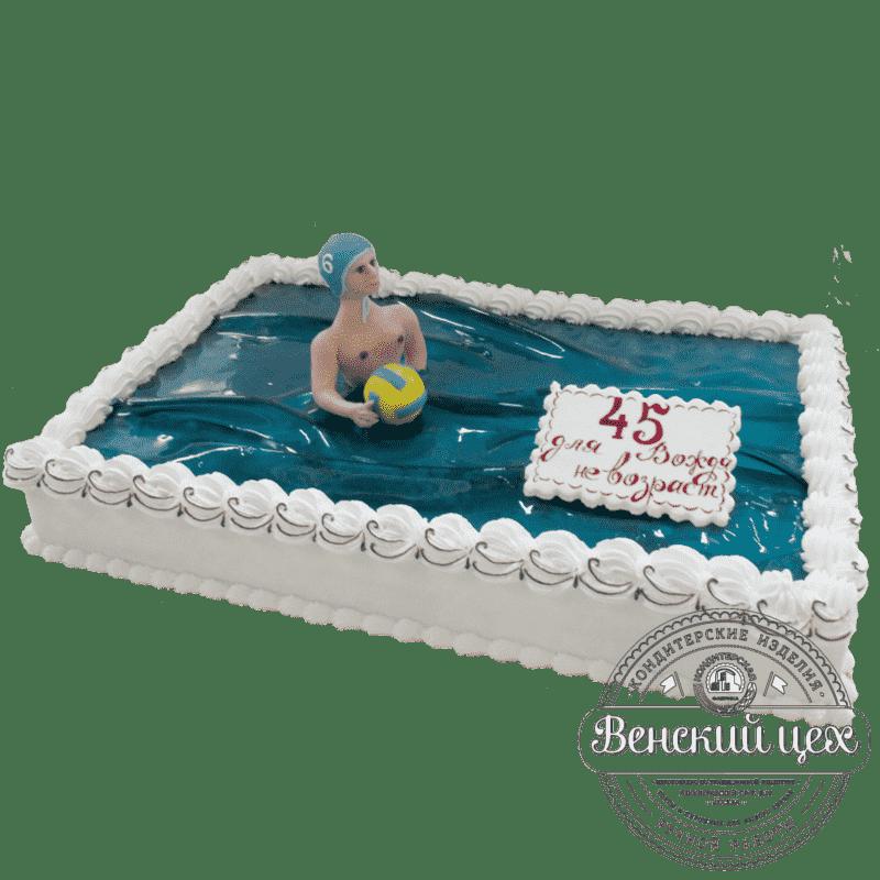 Торт на день рождения «Водное поло» №322