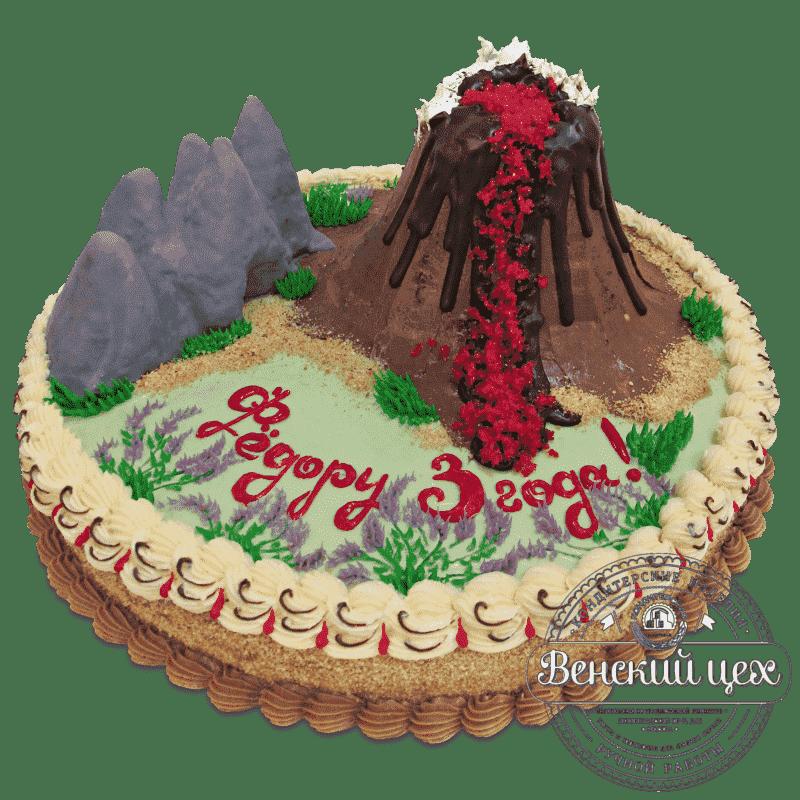 Торт на день рождения «Вулкан» №473
