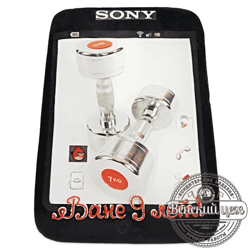 """Торт на день рождения  """"Sony""""  №688"""
