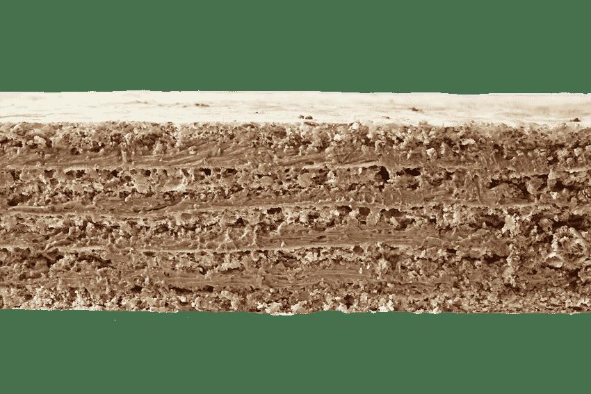 Миндальные коржи  с шоколадным кремом и пралине #9