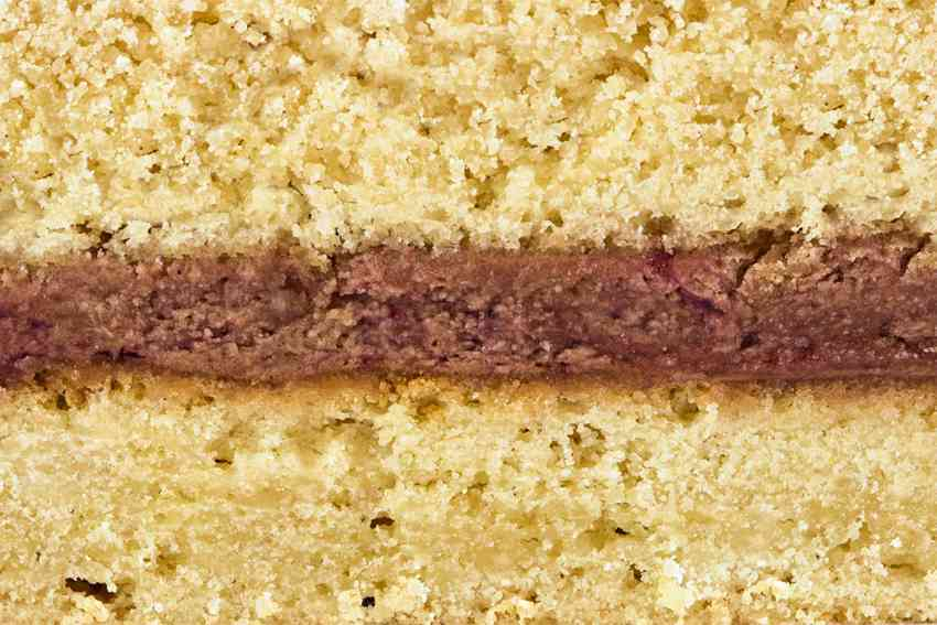 Черносмородиновый (песочные коржи и шоколадный крем с черной смородиной) #17