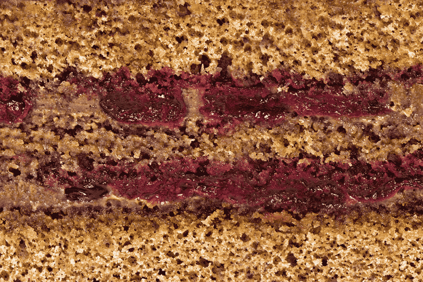 Шанталь (шоколадный бисквит, крем ганаш и вишня)
