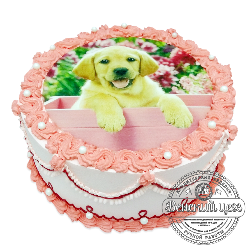 """Торт детский """"Щенок лабрадора"""" №2090"""